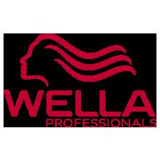 wella-icon-slider